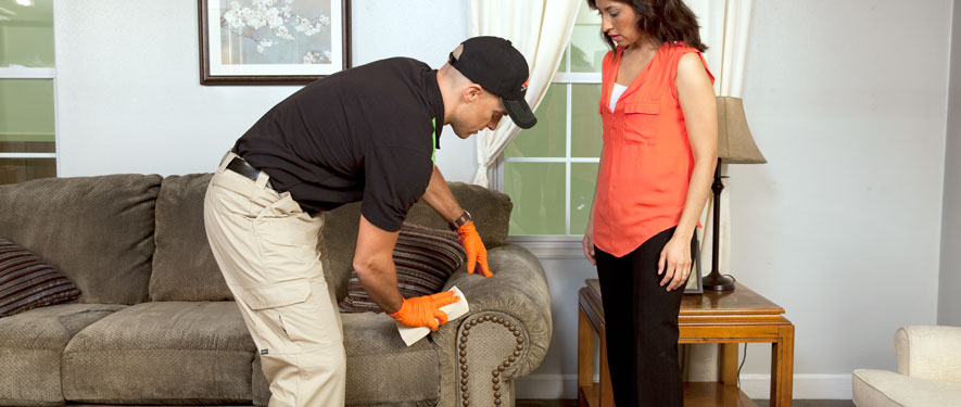 Chapel Hill, NC carpet upholstery cleaning